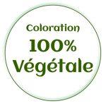 coloration-vegetale